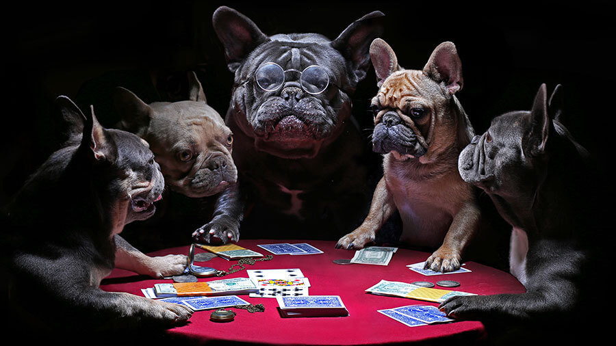 How to WIN Video Poker at Bella Vegas Online Casino
